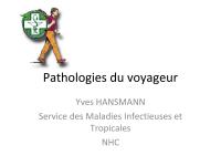 Pathologies du voyageur