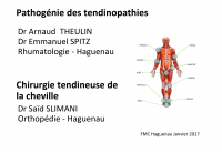 Pathogénie des tendinopathies